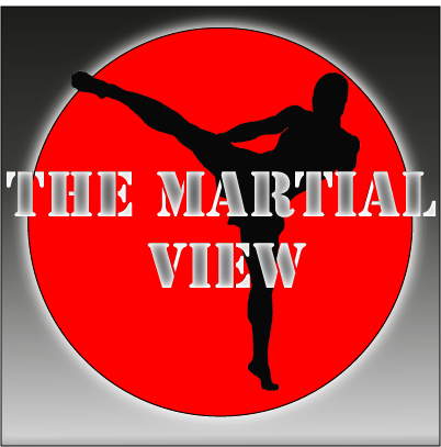 twitter logo Nice stuff nice people say about The Martial View