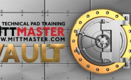 Review! The Mittmaster Vault!