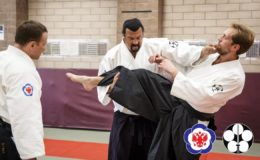Why Aikido has lost its relevance…